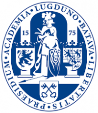University Lecturer in Historical Theory / General History
