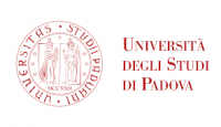 Supporting Talent In Research@University Of Padua - STARS@UNIPD -  Call for Proposals